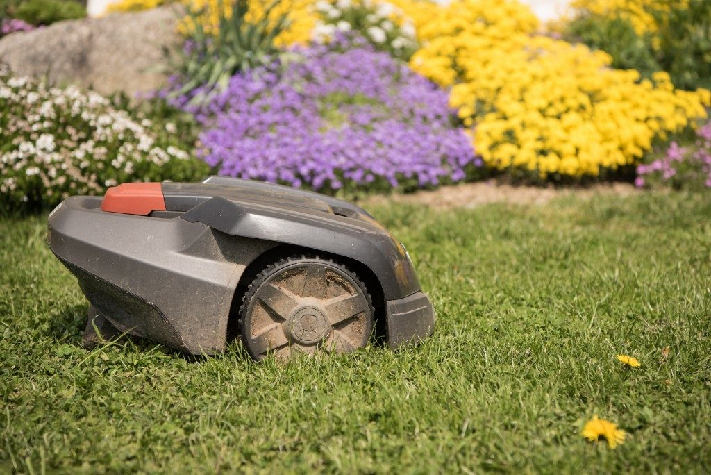 grass cutter in the garden